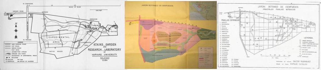 Figura 2. Planos del monte nativo del JBC en diferentes momentos de su historia (a la izquierda, 1954; centro, 1987 y derecha, 1995). Archivo JBC.